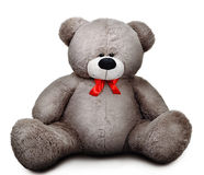 Soft grey sad teddy bear with red bow. Isolated over white background with shadow Stock Photo