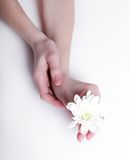 Soft hands Stock Image
