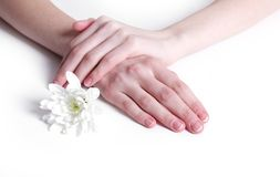 Soft hands Stock Images