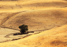 Soft hills of California.The twisting rural roads Royalty Free Stock Photo