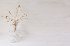 Soft home decor of  glass vase with spikelets on white wood background. Royalty Free Stock Photography