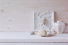 Soft home decor;  shells and corals on white wooden background. Royalty Free Stock Images