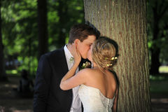 A Soft Kiss by the Tree. A Soft Kiss by the Tree given by the bride to the groom. Her hands softly caresses his chin and her beautiful hair arrangement is Stock Image