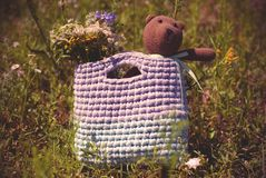 Soft knitting toy - brown bear sitting in the bag on the grass stock image