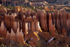 Soft Light on Bryce. Early morning light on the Hoo Doos of Bryce National Park in Utah Royalty Free Stock Photos