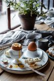 Morning snack with eggs and toasts near the window with flower in a pot. stock photo