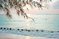 Soft light of sunrise on tropical beach Royalty Free Stock Photography