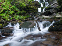 Soft little peaceful waterfall. Little waterfalls in a peaceful wood Stock Images