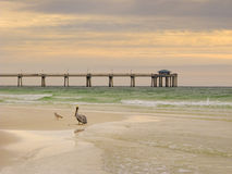 Soft morning light on beach at Florida's Emerald Coast beach Stock Photos