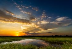 Sunset at rural scene. Soft and motion blur blue sky in sunset time with meadow at the rural scene Stock Photo