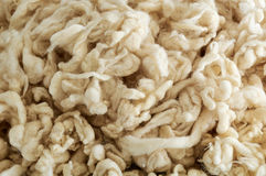 Soft natural wool from sheep Royalty Free Stock Images
