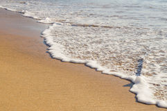 Soft ocean wave on the sandy beach Stock Images