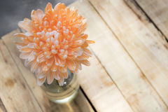 Soft orange flower. Soft focus orange flower on wooden table Stock Images