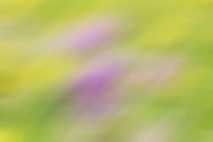 Soft pastel background in yellow, green and purple Stock Photo