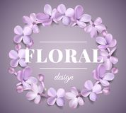 Pastel background with lilac flowers. Stock Photos