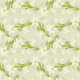 Soft pattern with lily Royalty Free Stock Photo