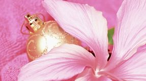 Soft Pink Christmas in July, hibiscus flower and gold glitter ball decoration background Stock Photo