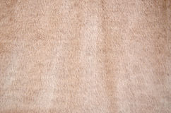 Soft pink fake fur Stock Image