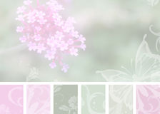 Soft Pink Floral Stock Photography