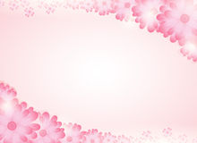Soft pink flower bright background. Royalty Free Stock Image