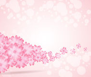 Soft pink flower bright wave from left side background. Stock Image