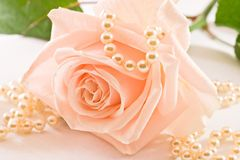 Soft pink rose and pearls stock photos