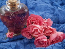 Soft Pink Roses Arranged in a Romantic Scene Stock Images