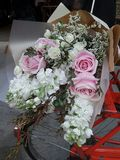 Soft pink roses and white flowers bouquet on red bicycle Royalty Free Stock Photo