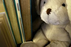 Soft plush rabbit sitting next to a row of standing books stock photography