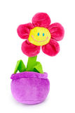 Soft plush toy flower in the pot Royalty Free Stock Photo