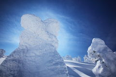 Soft rime, Mt.Zao in Japan Royalty Free Stock Photography