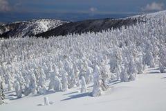 Soft rime, Mt.Zao in Japan Stock Photos