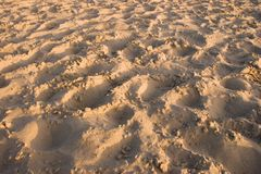 Soft Sand Background. Sand background with footprints Royalty Free Stock Photos