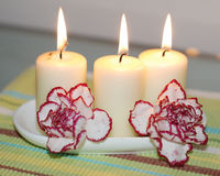 Soft Scented Candles. This is an image of 3 soft scented candles and flowers Royalty Free Stock Photo