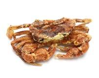 Free Soft Shell Crab Royalty Free Stock Image - 45918406