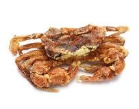 Soft shell crab Royalty Free Stock Image