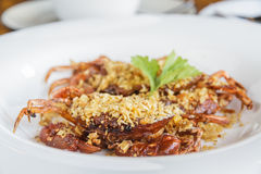 Soft shell crab fried with garlic Stock Images