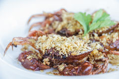 Soft shell crab fried with garlic Royalty Free Stock Photo