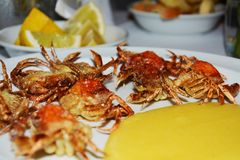 Soft shell crabs and cornmeal mush, background Stock Image