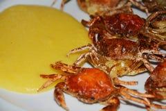 Soft shell crabs and cornmeal mush, close up Stock Photo