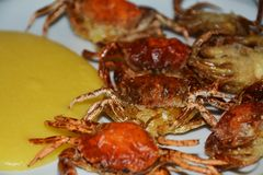 Soft shell crabs and cornmeal mush Royalty Free Stock Photography