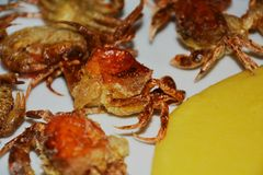 Soft shell crabs and yellow cornmeal mush, close up Stock Photo