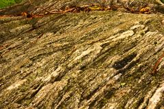 Soft Shot Rock Texture Background stock photography