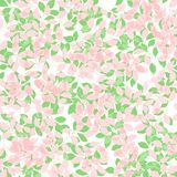 Soft Spring Leaves background. Soft pink and green Spring Leaves background Royalty Free Stock Images