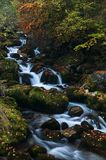 Soft stream flowing over mossy rocks in the colors of autumn. Soft stream flowing over mossy rocks in the river bed with visible trees and leaves in the colors Stock Image