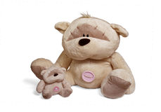 Soft teddy bear couple Royalty Free Stock Photos