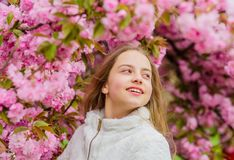 Soft and tender. Pink is on my mind. Pink is my favorite. Little girl enjoy spring. Kid pink flowers of sakura tree. Garden. Kid enjoying pink cherry blossom stock image