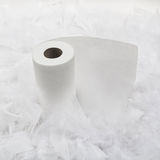Soft Toilet Paper Stock Photography
