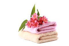 Soft towels and some flowers. Stack of spa soft towels with coral flowers on a white background Stock Photos