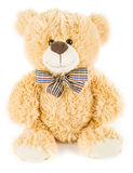 Soft toy bear Royalty Free Stock Photography